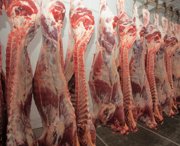 ABP's bid to acquire 50pc of Slaney Foods would give it 28pc of the national beef kill