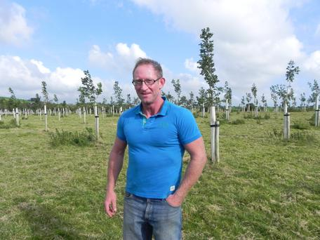 Liam Beechinor has planted a mix of oak and ash trees at 5x5m spacing intervals on his agroforestry plot at Dunmanway, Co Cork.