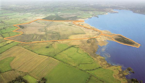 The biggest holding sold at auction in 2015; the 404ac Little Budds farm at Dysart on the shores of Lough Ennel in Westmeath. It sold at auction in March for €1.95m