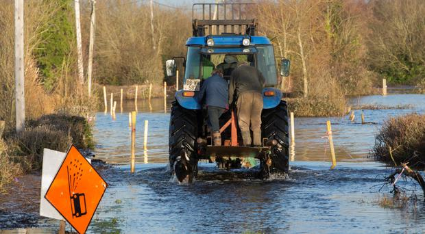 Disruption to milk collection expected as farmers brace for hurricane