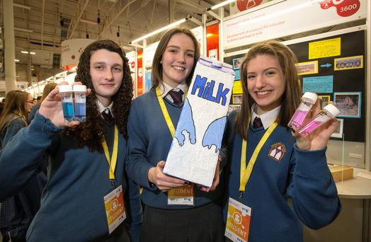 Desmond College, Limerick students, Siún Ní Cheallaigh with Róisín Nolan and Alanna Slater (all 16) pictured with their BT Young Scientist project which is a development of a natural pH indicator to detect spoilage in milk. Frank Mc Grath