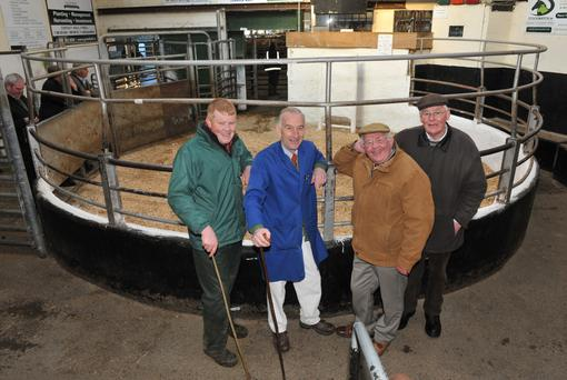 Members of the managemant team at Tullow Mart (l-r): Eric Driver, John Murphy, Kyran O Byrne, Eamonn O Byrne. Photo by Roger Jones