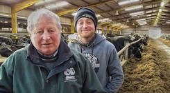 Tom Browne and his son Simon on their farm at Greenhills in east Cork