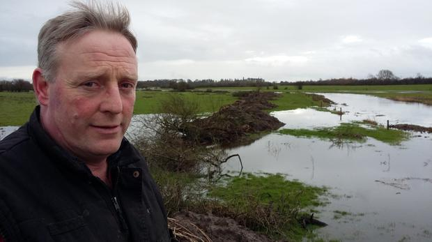 Michael O'Connell pictured on his land near Loughmore in Tipperary.