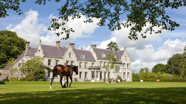 Students spend the final three months of the programme at Kildangan Stud in Kildare where a link-up has been established with UCD and other academic institutions.