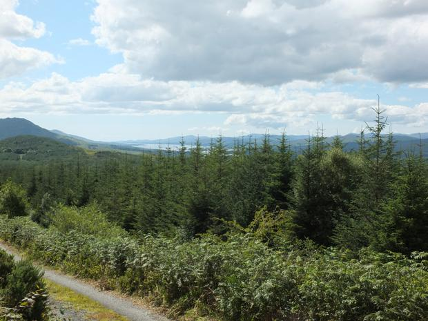 The property extends to 937ac in four locations in Kerry.