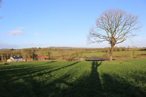 The 29ac holding is located at Clonkeefy, Oldcastle and the sale includes a partially renovated farmhouse.