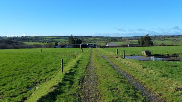 The holding is split into two farms of 66ac and 92ac; the larger farm (pictured) is located at Ballincurrig and is serviced by a hard-core central roadway.