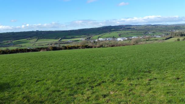The holding near Castlecomer is being offered on a six-year lease with an option to rent the house and extensive sheds separately or with the land.