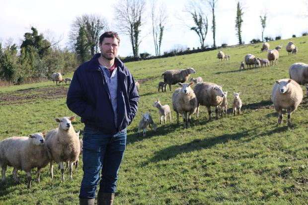 Clifford Richardson plans to expand his operation through breeding replacements from within the existing flock.