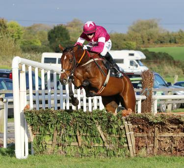 Identity Thief and Bryan Cooper winning at Down Royal last October. Photo: Alain Barr