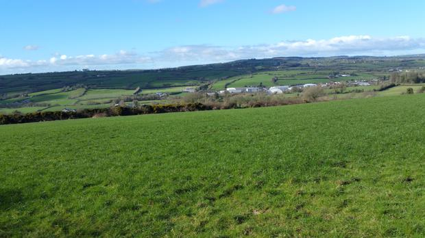 The 131ac holding near Castlecomer was was recently let for €208/ac