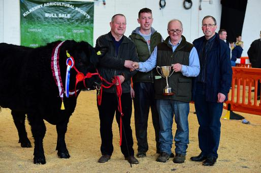 The winning champion Angus bull at Cillin Hill Show and Sale with owner Joe Moran, Powerstown, Goresbridge Co Kilkenny; Michael Moran; Terrance O Brien, presenting the cup, and judge Robert Shannon. Photo: Roger Jones.