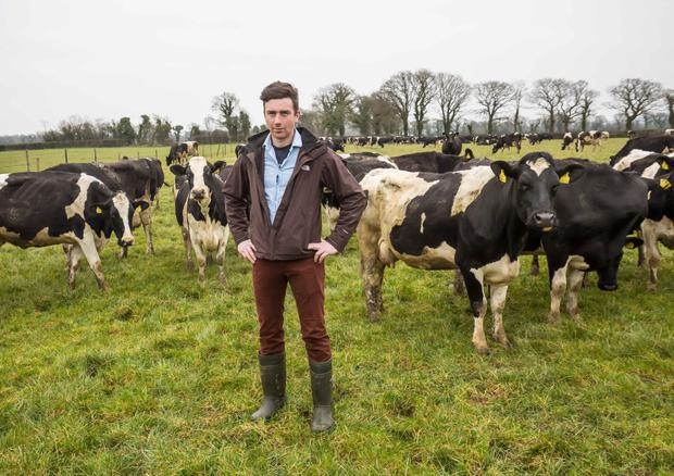 PJ O'Keeffe on the family farm in Callan, Co Kilkenny. Photo: Pat Moore.