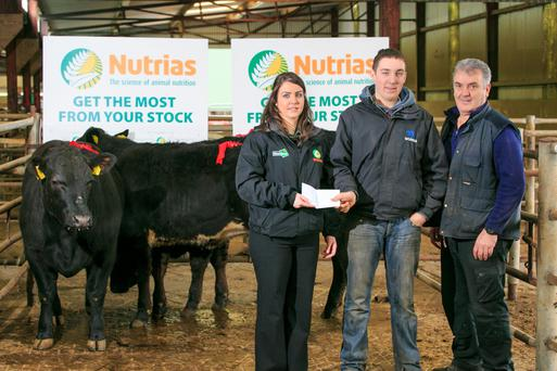 Kerrie Smyth, Aurivo Farm Commercial Specialist presents prizes to Ronan and Gerry Keville for 1st place in Lim Heifer, B/Blue Heifer and A/Angus Heifer