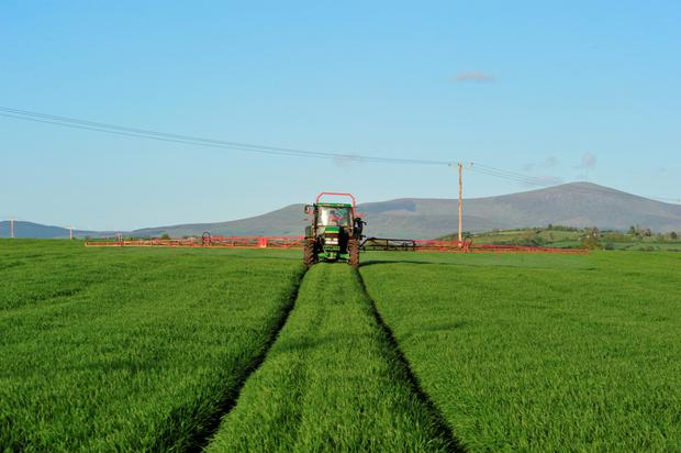 New chemicals to tackle septoria are a long way off so timing of application is vital in getting the most from existing fungicides.
