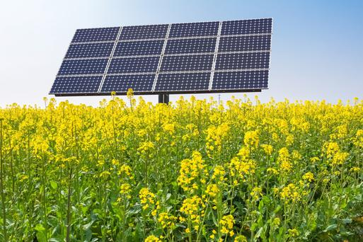 Solar can help ensure we reach our 2020 targets.