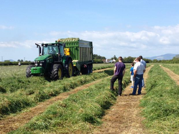 The cost of silage wrapping will be marginally better this year than in 2015.