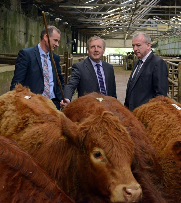 Pictured in Bandon Mart at the launch of the Mart Modernisation scheme were (l-r) Sean Coughlan CEO ICBF with Minister for Agriculture Michael Creed and Sean O'Sullivan CEO Cork Marts. Photo: Denis Boyle.