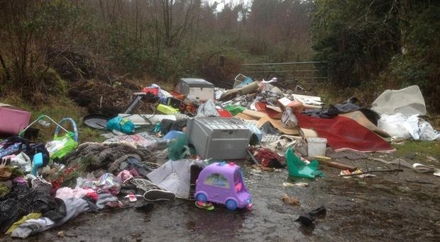 The scene at a forest in Kiltegan, Co Wicklow which has been repeatedly used as a dumping ground by fly-tippers.