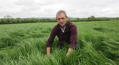 Joe Farrell produced great quality first cut silage.