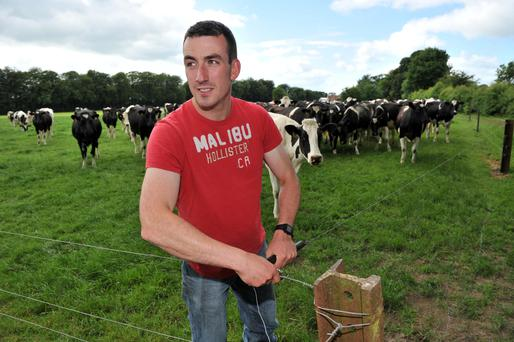 Damien McGrath pictured left on the family farm at Carrowmoneen near Tuam, Co Galway. Photo: Ray Ryan.