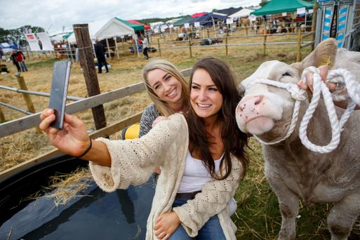 Ciara Hendy from Ballybrittas, Laois and Aoife Breen from Tullaroan, Kilkenny at the 2015 Tullamore Show and AIB National Livestock Show. Picture: Jeff Harvey