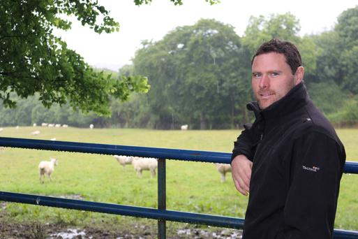 Clifford Richardson on the family farm where the weaned lambs have been grazing the best grass since July 1.