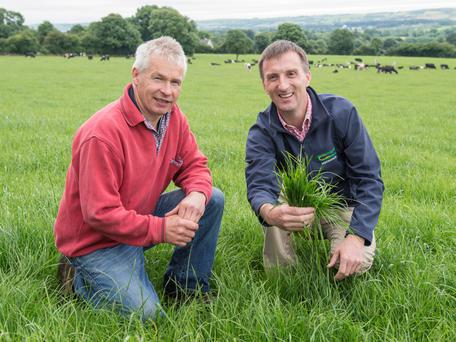 Host farmer Michael Gowen and Tom O'Dwyer, Teagasc, check grass cover at the Teagasc dairy farm walk at Downing, Kilworth, Co Cork on 'Managing Through 2016'. Photo: O'Gorman Photography.