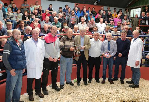 The award for supreme champion was presented to exhibitor Michael Fleming at the weanling show and sale at Kanturk Mart