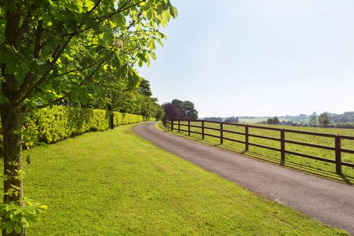 Ballygriggan House stands on 155ac