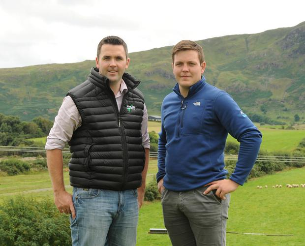 Sheep farmers David Prendergast and Tom Staunton, Tourmakeady, are also co-founder of an animal health company