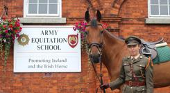 Commandant Sharon Crean has become the first ever female officer to be appointed to Second in Command of the Army Equitation School in its 90-year history.