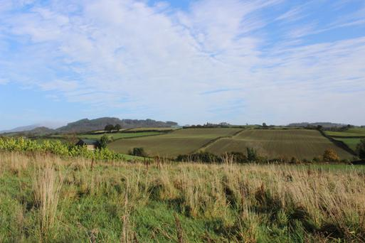 The 256ac grassland and tillage farm straddles the border between the Republic and the North