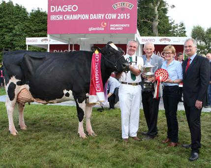 Pictured at the 2015 Diageo Baileys Champion Dairy Cow Competition at the Virginia Show, Co. Cavan were Champion Cow winner John Barrett from Togher Co. Cork; Henry Corbally Chairman Glanbia Ingredients Ireland; Mairead McGuinness MEP; and Breffni O'Reilly, Quality Director Diageo Ireland
