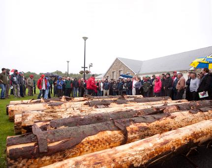 Teagasc will be putting on three timber marketing events