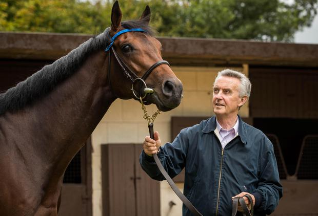 Jim Bolger with his QIPCO Irish Champion Stakes contender, Moonlight Magic. Photo: INPHO/Ryan Byrne