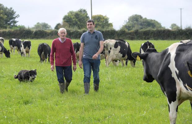 John Daly and his father Jeremiah on their farm at Lisrobin, Kiskeam, Co Cork