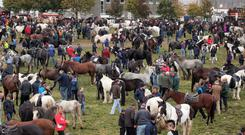 Organisers of the Ballinasloe Horse Fair said they had decided to cancel a number of events, including the official opening, free music entertainment on the festival sound stage over the opening weekend and the lunging events, where sellers showcase their horses.