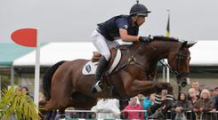 Ridden for New Zealand by Tim Price, Ringwood Sky Boy is just one of many top event horses to have been produced by the Leonards over the years. Photo: Peter Nixon