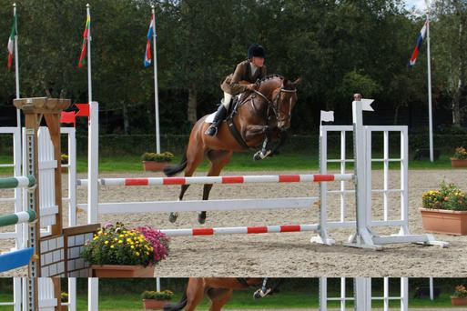 Ann O'Grady in action at Millstreet recently riding Omard On The Ball Photo: Denisa Photo