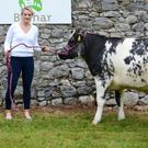 Cork dual camogie and football star, Briege Corkery with the second highest price heifer in the Bothar auction - a Belgian Blue which sold for €2,700.