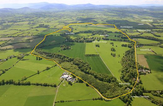 An aerial view of Harristown House and farm located in the heart of Kildare's stud farm belt