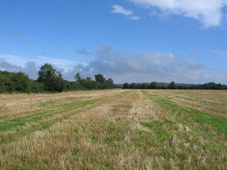 The 234ac tillage farm is located at Gillstown near Slane
