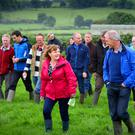 Over 700 people attended the Teagasc Green Acres Calf to Beef farm walk on Michael Flynn's holding near Puckane, Co Tipperary. Photo: Feargal Shanahan