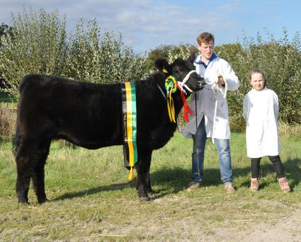 Ronan and Fiona Mulligan, Dromod, Co Leitrim, with the Female Champion, Clooncarne Nickey
