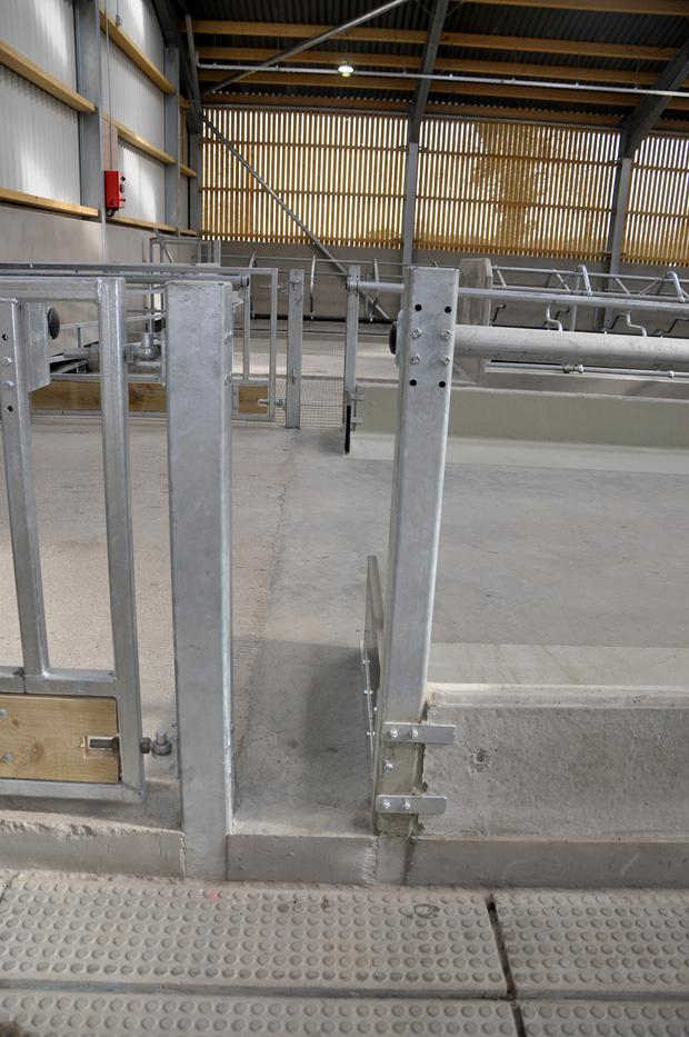 Special gateways for staff and students were installed along the feed passage to increase safety in the house.