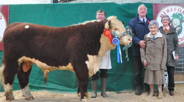 Sisters, Lelia and Margaret McCabe, Carrigallen with their Reserve Champion bull, 'Beaghmore Remeo 2', John Morrow, handler, and John Holloway, judge