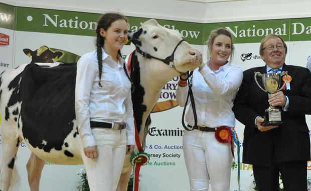 Show judge, Meurig James presenting the Junior Holstein Championship to Stacey and Sinead O'Sullivan, Bandon for Knockbrown Stonewall Lady