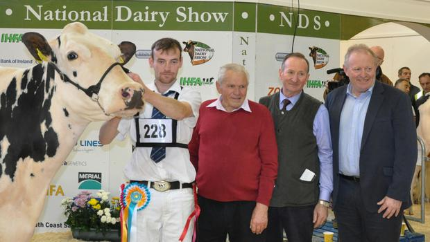 Confined Cow in Milk, Foherish Shottle Rhonda, exhibited by Jerome O'Leary, Clondriohid, Co Cork with Edwin Gaynor, handler, Martin O'Donnell, and Sean O'Leary, IFA Dairy Chairman